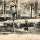 Les Landes, 1916-1918